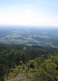 Liberec 229