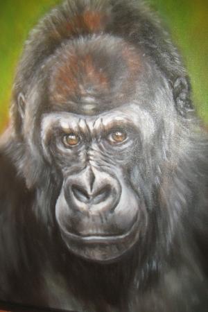 Obraz Gorila