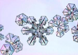 Sněhová vločka 4